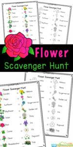Flower-Scavenger-Hunt