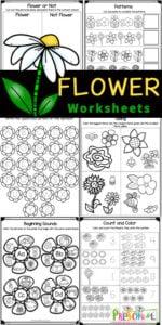 flower worksheets