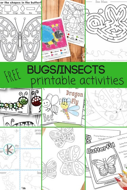 50+ FREE Printable Insect Worksheets