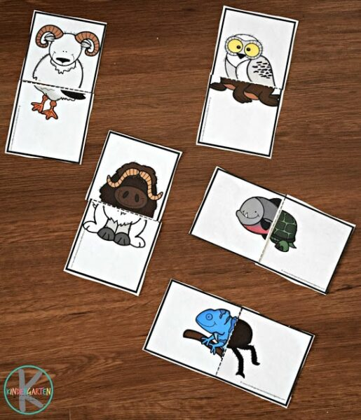 silly animal puzzles for prek and kindergarten age kids to learn about animals and their habitats in science