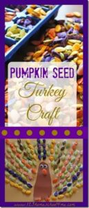 pumpkin seed turkey craft