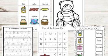 Teddy-Bear-Picnic-Printable-Pack-d