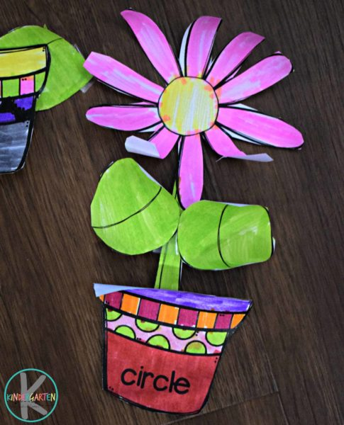 flower-shape-activity