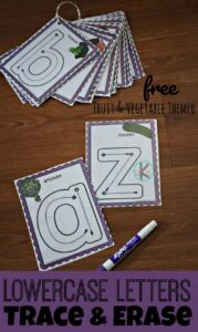 Lowercase letters Trace and Erase