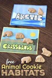 Super cute FREE Animal Cookie Habitats activity for preschool, kindergarten, and first grade kids