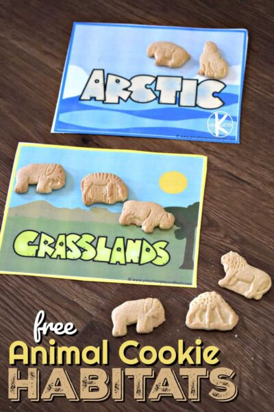 Super cute FREE Animal Cookie Habitats activity for preschool, kindergarten, and first grade kids