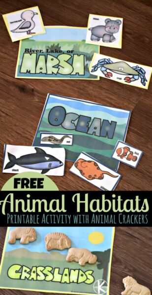 FREE Animal Habitats printable activity with animal crackers - fun science activity for preschool, kindergarten, and first grade kids #habitats #animalcrackers #kindergarten
