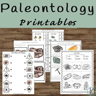 LOW PREP paleontologist worksheets