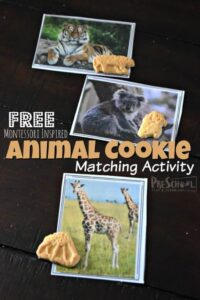 montessori inspride animal cookies matching to real leaf animal printable cards