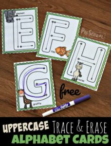 lwoercase animal alphabet tracing cards