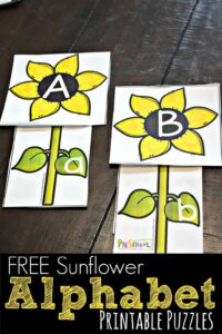 FREE Sunflower Alphabet Printable Puzzles - this is such a fun alphabet activity for preschool, prek, and kindergarten age kids to practice matching upper and lowercase letters #alphabet #fall #preschool