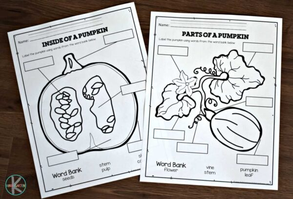 FREE Parts of a Pumpkin Worksheets to help kids learn science vocabulary for growing pumpkins. great printable for October and November