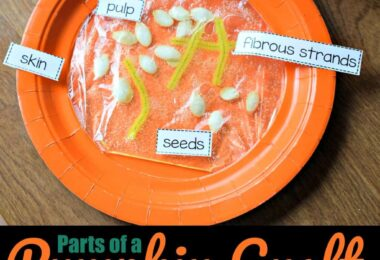 Parts of a Pumpkin Craft and free worksheet for preschool, prek, and kindergarten age kids for the fall #pumpkin #craftsforkids #kindergarten