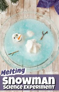 Melting Snowman-Science Experiment