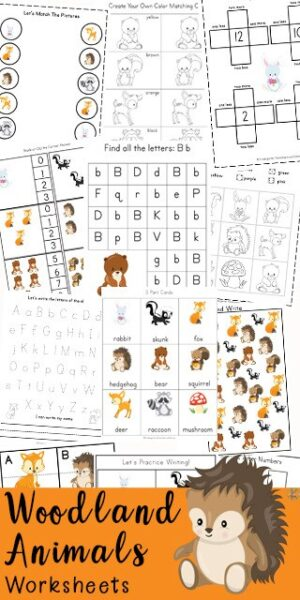 FREE Woodland Animals Printable Pack - kids will have fun learning math and literacy skills with this HUGE printable pack filled with Free Animal worksheets. Practice counting, skip counting, alpahbet letters, i sphy, tracing letters, rhyming, colors, shapes and so much more with preschool, prek and kindergarten. #worksheetsforkids #Preschool #kindergarten #animalprintables #education