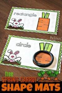 Spring Carrot Shape Mats