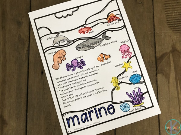 learn about biomes for kids in this no prep science worksheet for kindergartners