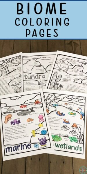 Kids will have fun learning about five different biomes with these free printable biome coloring pages. Each biomes coloring worksheet focuses on a different animal habitat such as the tundra, desert, marine, wetland, and rainforest.  Children will color and read key facts about each biome. This is a fun way to learn about biomes for kids from kindergarten, first grade, 2nd grade, 3rd grade, and 4th grade students.  Simlply download biomes coloring pages pdf and you are ready to read, color, and learn!