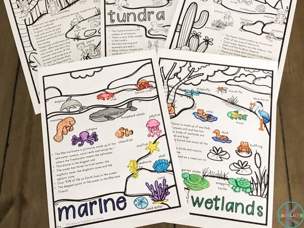 students will have fun learning about different animal habitats with these free printable biome worksheets for prek, kindergartners, and first graders