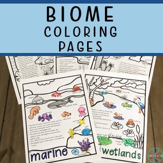 biomes printable for kindergarten science