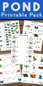 Young children will love this fun and free Pond Printable Pack that contains many things that kids enjoy such as insects, frogs, turtles, ducks and of course, water!