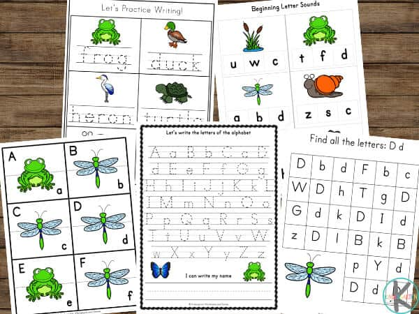 free worksheets for kids with a pond theme including frogs, ducks, heran, turtle, butterfly, snail, and more