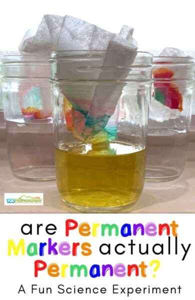 Are Permanent markers actually permanent? Discover the answer in this fun science experiment for preschool, pre k, kindergarten, first grade, 2nd grade, and 3rd grade students.