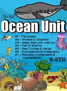 HUGE 240 pages Ocean Animals Unit with 7 lessons covering marine animals from whales to sharks, star fish to sea turtles, bivalves to frogs, jellyfish, and more!