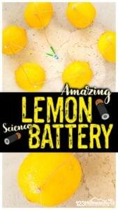 amazing lemon battery experiment for kids