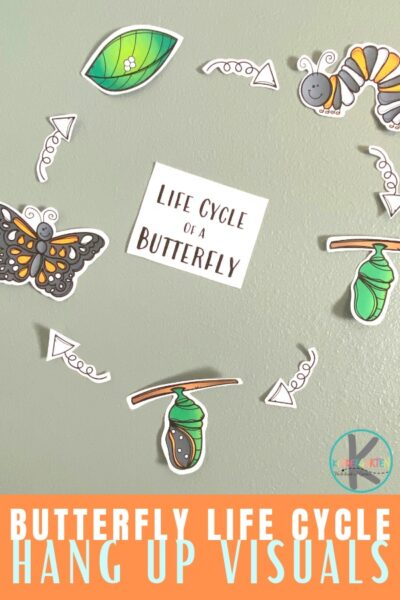 Learn about the life cycle of a butterfly with this super cute, simple Butterfly Life Cycle Craft. In spring we start to see butterflies appear and the amazing metamorphosis that happens as they go from caterpillar to chryssalis to butterfly is super cool. Use thislife cycle of a butterfly craft ideas for toddler, preschool, pre-k, kindergarten, and first grade students to learn about these amazing insects!Simply printpdf file with butterfly life cycle printable and you are ready to play and learn about butterflies for kids!