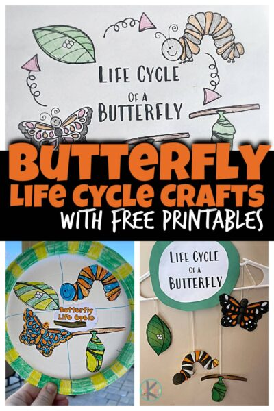Learn about the life cycle of a butterfly with this super cute, simple Butterfly Life Cycle Craft. In spring we start to see butterflies appear and the amazing metamorphosis that happens as they go from caterpillar to chryssalis to butterfly is super cool. Use thislife cycle of a butterfly craft ideas for toddler, preschool, pre-k, kindergarten, and first grade students to learn about these amazing insects!Simply print pdf file with butterfly life cycle printable and you are ready to play and learn about butterflies for kids!