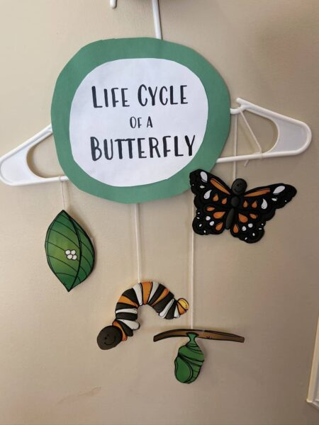 Butterfly cycle craft