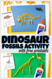 Make prehistoric dinosaurs come alive with this dinosaur fossils for kids activity! Toddler, preschool, pre-k, kindergarten, first grade and 2nd graders will have fun making fossils out of pasta using these freedinosaur fossil printables. Simply download pdf file withdinosaur printablesand you are ready to play and learn about dinosaurs with thisfossils for kids project.