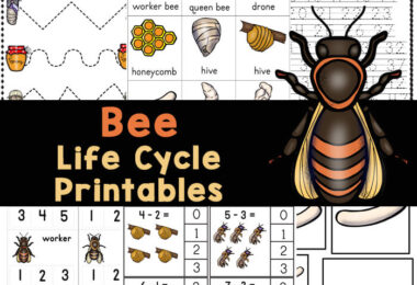Grab these bee printables to learn about the life cycle of a bee plus math and literacy review too! Over 50 pages of FREE bee worksheets to play and learn.