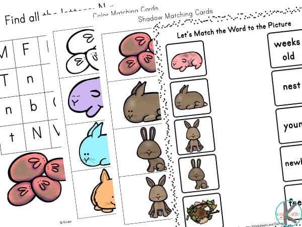 bunny worksheets