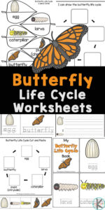 If you are looking for a fun, simple way for kids to learn about the life cycle of a butterfly, then you will love these cutebutterfly life cycle worksheets. These life cycle of a butterfly printables are perfect for preschool, pre-k, kindergarten first grade, 2nd grade, and 3rd graders. Thesebutterfly worksheets are filled with not only fun information aboutbutterfly life cycle, but no-prep activities for tracing, alphabet matching, counting, butterfly science vocabulary, cut and paste life cycle worksheet, letter puzzles, letter tracing, find the letter, label the butterfly and more! Simply print pdf file withlife cycle of butterfly worksheet for kindergarten.