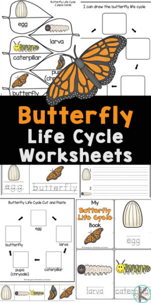If you are looking for a fun, simple way for kids to learn about the life cycle of a butterfly, then you will love these cutebutterfly life cycle worksheets. These life cycle of a butterfly printables are perfect for preschool, pre-k, kindergarten first grade, 2nd grade, and 3rd graders. Thesebutterfly worksheets are filled with not only fun information aboutbutterfly life cycle, but no-prep activities for tracing, alphabet matching, counting, butterfly science vocabulary, cut and paste life cycle worksheet, letter puzzles, letter tracing, find the letter, label the butterfly and more! Simply downloadpd file withlife cycle of butterfly worksheet for kindergarten.