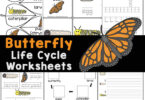 🦋 Learn about the butterfly life cycle with these butterfly worksheets. Over 50 pages of FREE life cycle of a butterfly printables for kindergarten, pre-k, and elementary age students.
