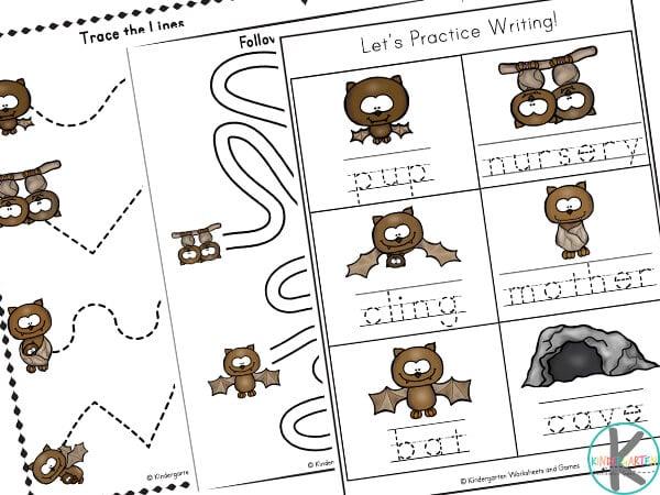 bat worksheets for kindergarten