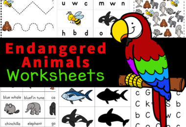 Children will have learning about animals for kids with these super cute, free printable, animal worksheets for kindergarten! This huge pack of over 50 animal worksheets are a variety of math and literacy skills for preschool, pre-k, k5, and first graders. These wild animals worksheet allow kids to learn about 18 endangered animals. Simply printanimal worksheets for preschoolers and you are ready to play and learn!