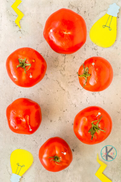 Stick a nail about halfway in each of the tomatoes.