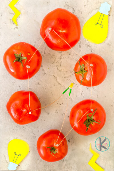 Electricity from Tomatoes