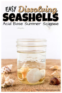 You will love these simple summer science experiments that help kids learn and explore with summer seashells! For thisseashell activities all you need are a couple simple materials to try your hand at an EASY acid base experiment. Try thissummer sciencewith toddler, preschool, pre-k, kindergarten, first grade, and 2nd graders too. I just love usingsummer activity for kids that are fun and educational too!