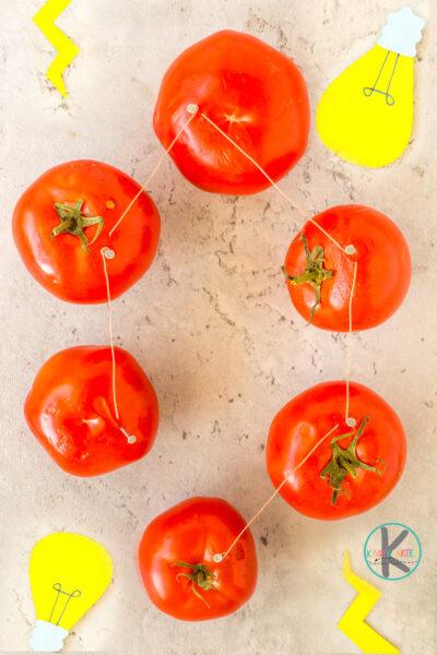Tomato Powered Light