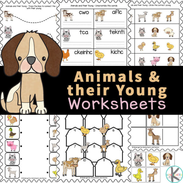Children will have fun learning about animals with this animals and their young worksheets. In this set are a variety of animals and their young ones workeet choices for preschool, pre-k, kindergarten, first grade, 2nd grade, 3rd grade, and 4th graders too. We have simple animals and their babies worksheet choices for young children, matching baby animals to their mothers, cute animal cut and paste. SImply printanimal worksheets for kindergarten and you are ready to play and learn in your nextanimal theme orzootheme.