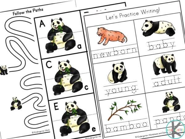 panda kindergarten worksheets pdf