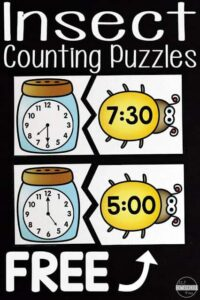 insect telling time activity