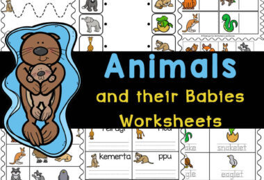 Learn baby animal names while improving literacy with these animals and their babies worksheets. Print FREE Kindergarten worksheets pdffor fun activities.