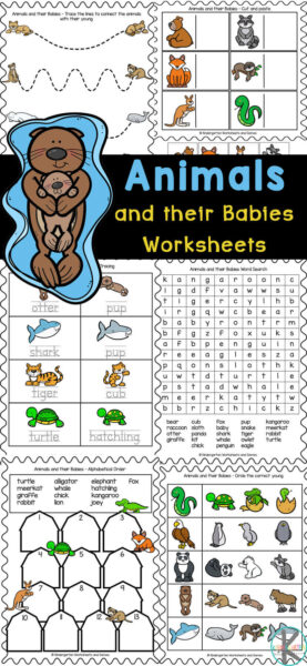 Children will have fun learning about a variety of animals for kids and their babies with these fun and free Animals and their Babies Worksheets. There are lots of differentanimal worksheets in this set to work on pre-writing skills, animal matching, cut and paste worksheets, circle the correct young one, unscramble the name, alphabetical order, kindergarten word search, baby animal names tracing, and more!Simply print Kindergarten worksheets pdfand you are ready to play and learn with ananimal activities for kindergarten, preschool, pre-k, and ifrst graders. These animal printables are perfect for your upcominganimal theme.