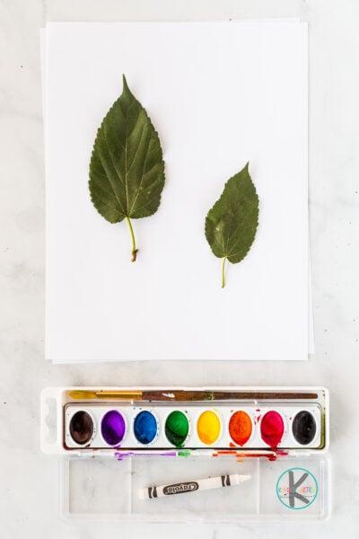 Leaf Craft Ideas